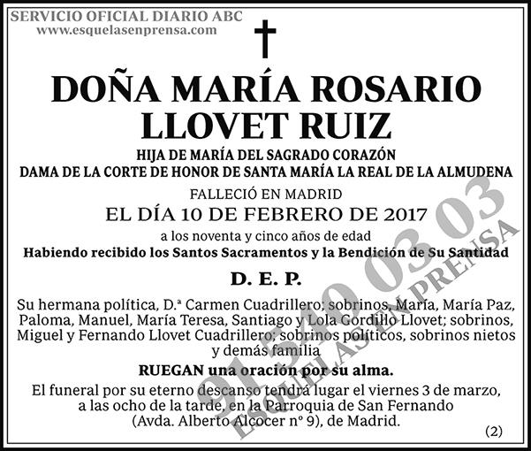 María Rosario Llovet Ruiz